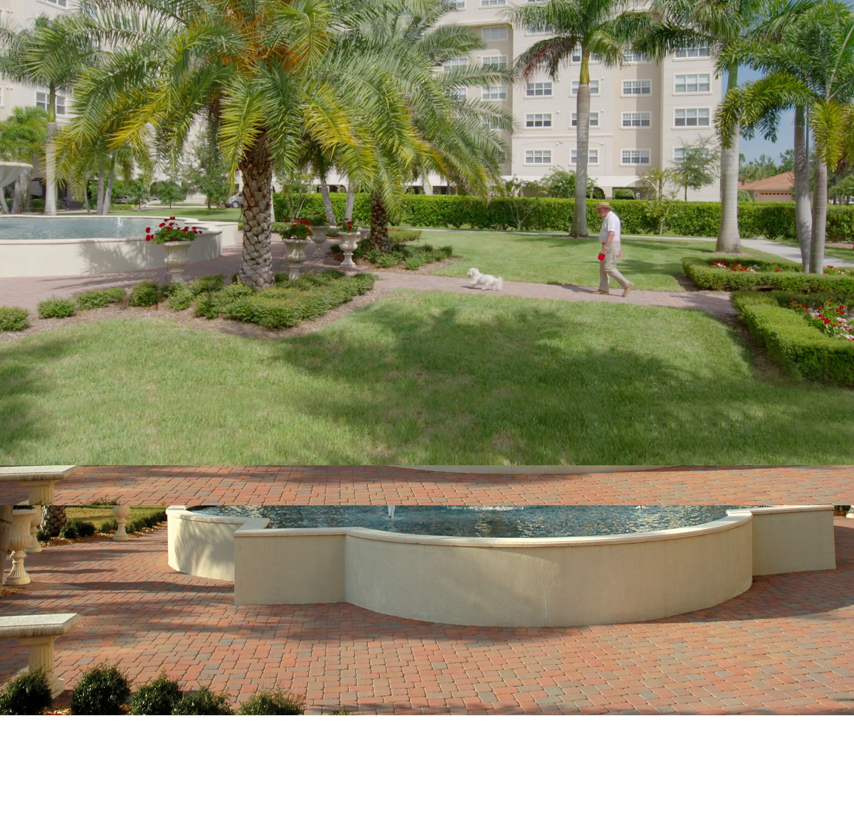 Living Room In Venice Fl: Assisted Living