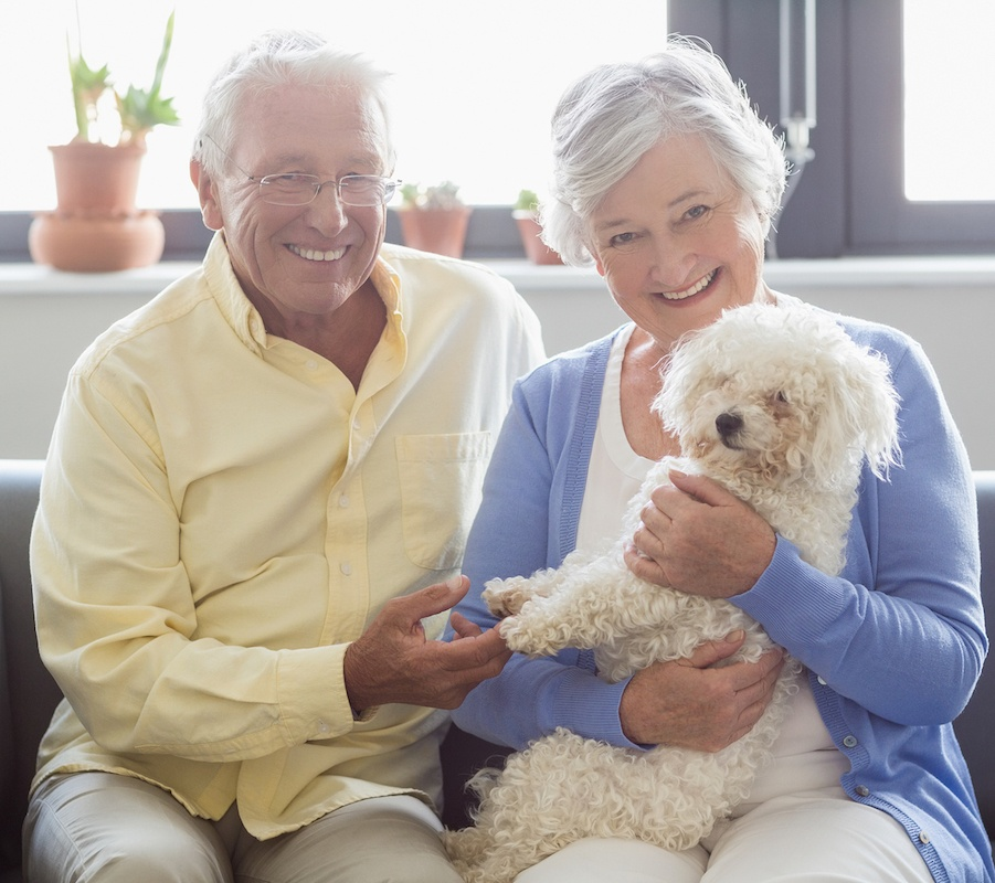 Why Having Pets May Be Good for Our Health